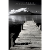 Ambition  61х91,5